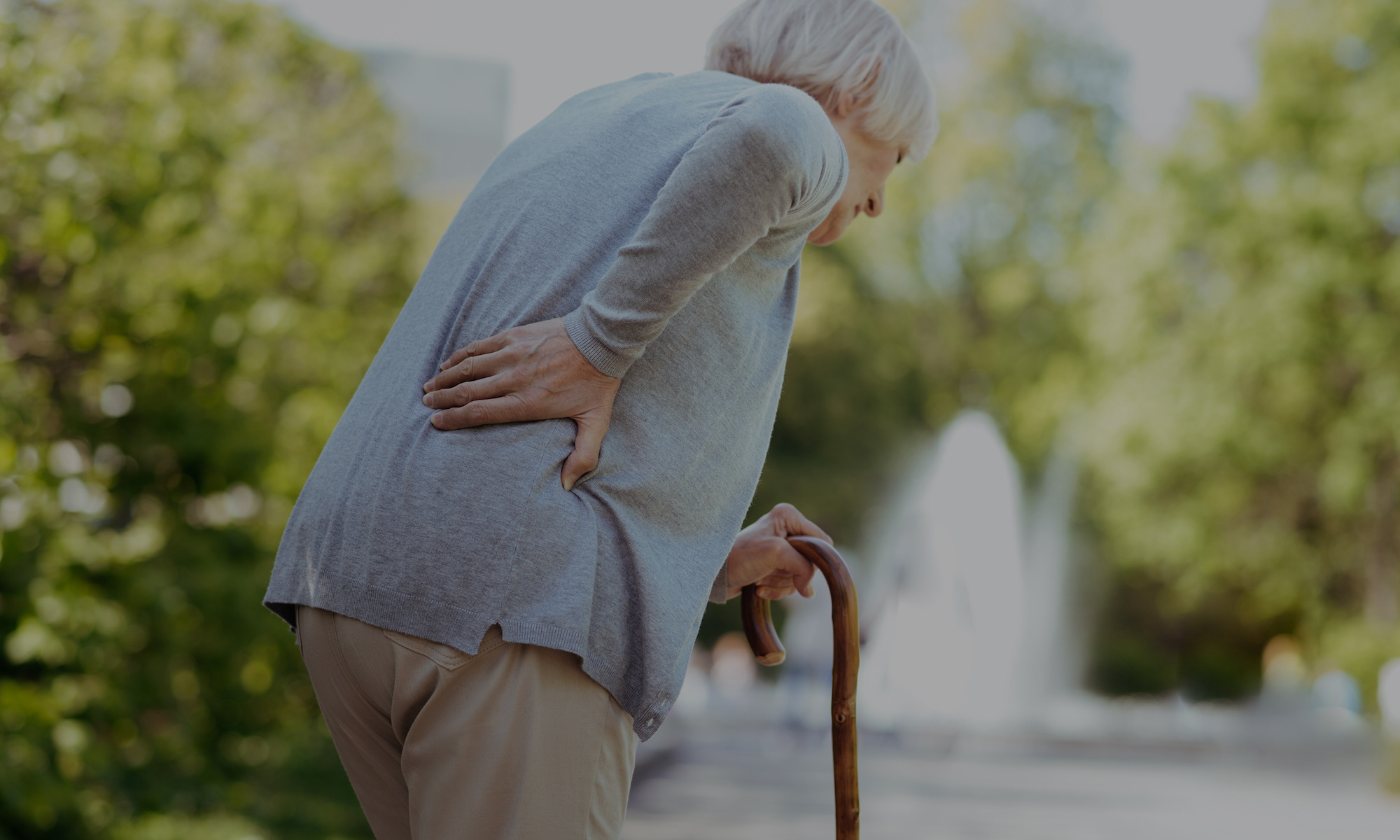 fratture vertebrali osteoporotiche